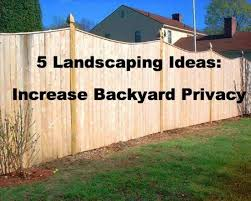 Ideas For Backyard Privacy Backyard Landscaping Ideas For Privacy U2013 Erikhansen Info