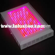 most efficient grow light led lighting full spectrum led grow lights incredible energy cost