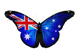 Pictures Of The Australian Flag Australia Butterfly Deaf Butterfliesdeaf Butterflies
