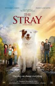 movies with australian shepherds in them view latest movie showtimes buy tickets celebration cinema