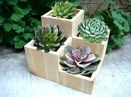 awesome designer planter pots indoors modern plant wood cheap
