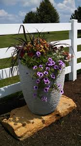 Container Gardening Business Containers