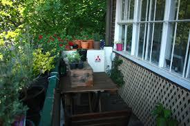 how to grow an edible balcony garden wandering spice