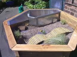 how to build a tortoise table terrarium design amazing tortoise terrarium for sale tortoise