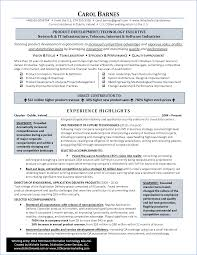 Resume Samples Hr Executive by Best It Resume Award 2014 Michelle Dumas