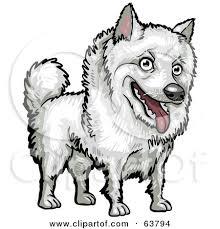 american eskimo dog tattoo royalty free rf clipart illustration of a friendly white