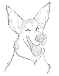 learn how to draw a dog with a free tutorial impact books