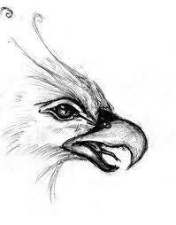 the 25 best phoenix drawing ideas on pinterest tattoo pheonix