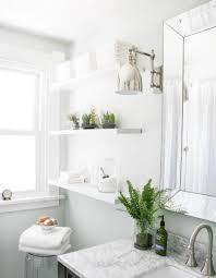 enchanting best bathroom plants 26 best bathroom plants nz a small size enchanting best bathroom plants 82 best bathroom plants nz full size of bathroombest large size