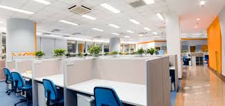 denver commercial office interior paint color suggestions the