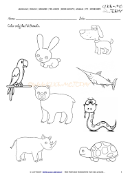 pet animals worksheet activity sheet 1