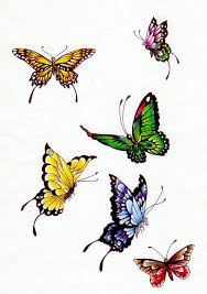 butterfly colors 1 by koshii on deviantart