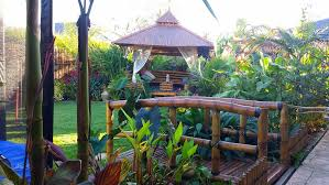 Tropical Backyard Designs Home Tropical Gardens Bali Style Garden Designs Melbourne