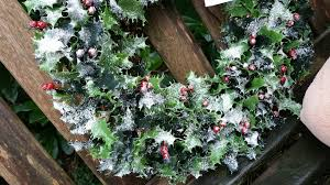 free images snow winter leaf produce holiday garden flora