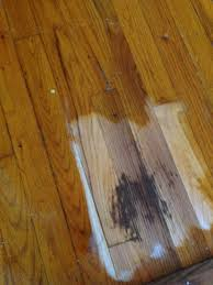 Images Of Hardwood Floors Refinishing Hardwood Floors Pretty Purple Door