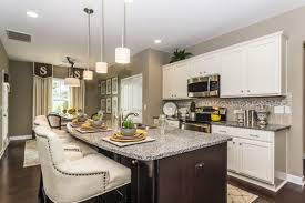 do you like white kitchens or natural wood kitchen cabinets