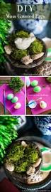 diy moss covered eggs moss decor easter decor and easter crafts