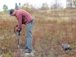 grassland native plants native plant restoration superior watershed partnership u0026 land trust