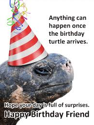 fun turtle funny birthday card for friends birthday u0026 greeting