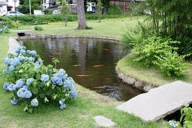 How To Build A Pond In Your Backyard by Exquisite Decoration Building A Pond Beauteous How To Build Pond