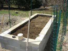 Raised Garden Bed On Concrete Patio The Concrete Farmer Laguna Dirt