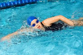 meal plans for swimmers livestrong com