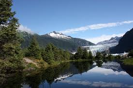 Alaska forest images Ancient forest uncovered at mendenhall glacier in alaska jpg