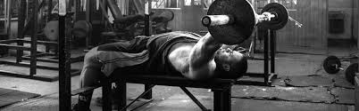 black friday bodybuilding iron intelligence day 40 chest and triceps