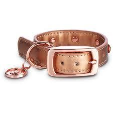 modern luxe rose gold bling dog collar petco