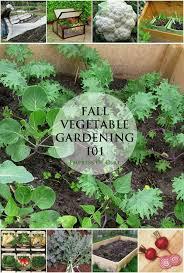 1422 best great gardening 411 images on pinterest gardening