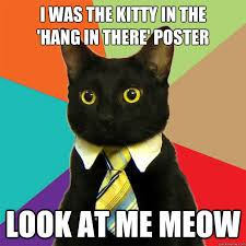 Hang In There Meme - i was the kitty in the hang in there poster cat meme cat