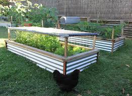 best raised garden gardening ideas