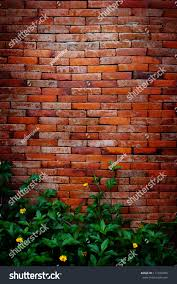 red brick wall climbing plants stock photo 111229784 shutterstock