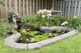 Backyard Pond Ideas With Waterfall 35 Backyard Pond Images Great Landscaping Ideas
