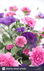Carnation Flower Flower Decoration With Pink Carnation Flowers Stock Photo Royalty