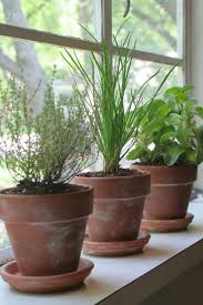 Herb Planter Indoor Clay Pot Herb Garden Ginsbooknotes Com