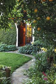 66 best fruit images on pinterest landscaping vegetable garden
