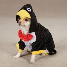 Dog Halloween Costumes Adults Penguin Pup Dog Costume Additional 10 Promo Code
