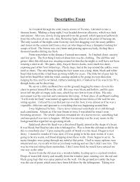 sample argumentative essay argumentative essay example college sample argument essay resume cv cover letter resume cv cover letter