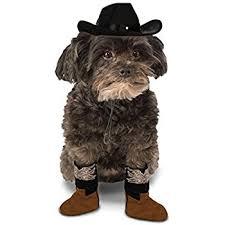 affenpinscher brown amazon com pet cowboy hat small medium pet supplies