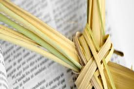 palm for palm sunday palm sunday lord of the lakes lutheran church