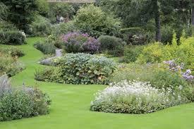 Pflanzen Fur Japanischen Garten Pflegeleichter Garten Welche Pflanzen Passen