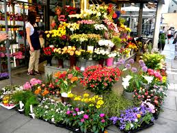 flower shops the magic of flower how to impress your beloved with them