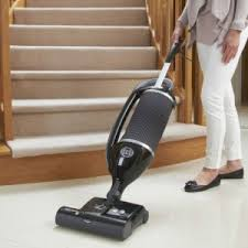 Vaccumming Sebo U0027s Pet Vacuuming Specialist For Allergy Sufferers U2014the Felix