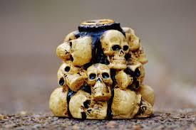 Human Anatomy Skull Bones Free Images Dish Meal Produce Halloween Death Breakfast