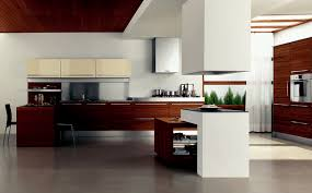 kitchen design exciting awesome sleek brown cabinets and kitchen