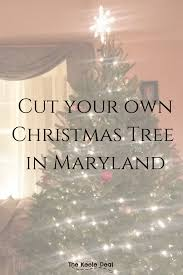 cut your own christmas tree at these farms in maryland the keele