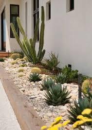 Arizona Landscaping Ideas by Front Yard Az Landscape Arizona Landscaping Ideas Landscape