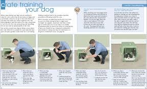crate training crate training your dog bark machine