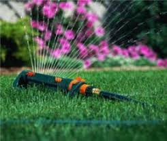 Lawn And Landscape by Best 10 Lawn Care Tips Ideas On Pinterest Grass Lawn Care And